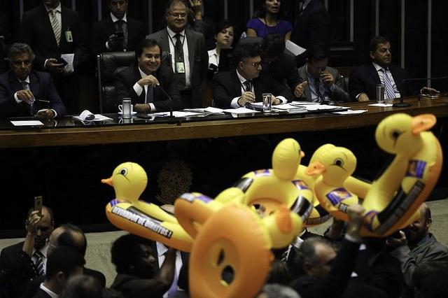 Deputados protestam com patos durante a votação do pl-4302